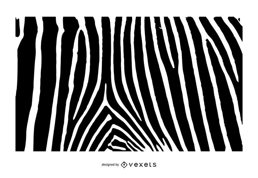 822x570 Zebra Print