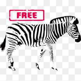 260x261 Zebra Print Png, Vectors, Psd, And Clipart For Free Download Pngtree