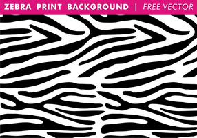 286x200 Zebra Print Vector