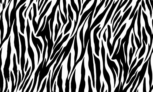 500x300 Zebra Print Vector 2 By Inferlogic On Clipart Library