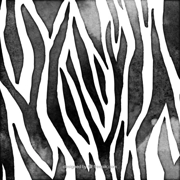 626x626 Zebra Animal Print Vector Free Download
