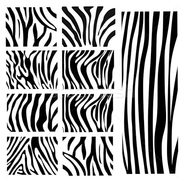 600x600 Zebra Print Stock Vectors, Illustrations And Cliparts Stockfresh