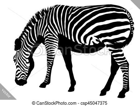 450x340 Black And White Linear Paint Draw Zebra Vector Illustration. Black