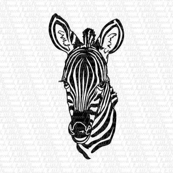 Zebra Vector Art