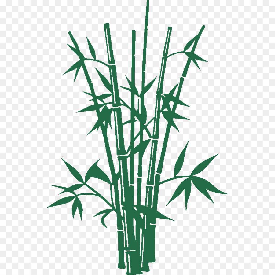900x900 Vector Graphics Bamboo Illustration Shutterstock