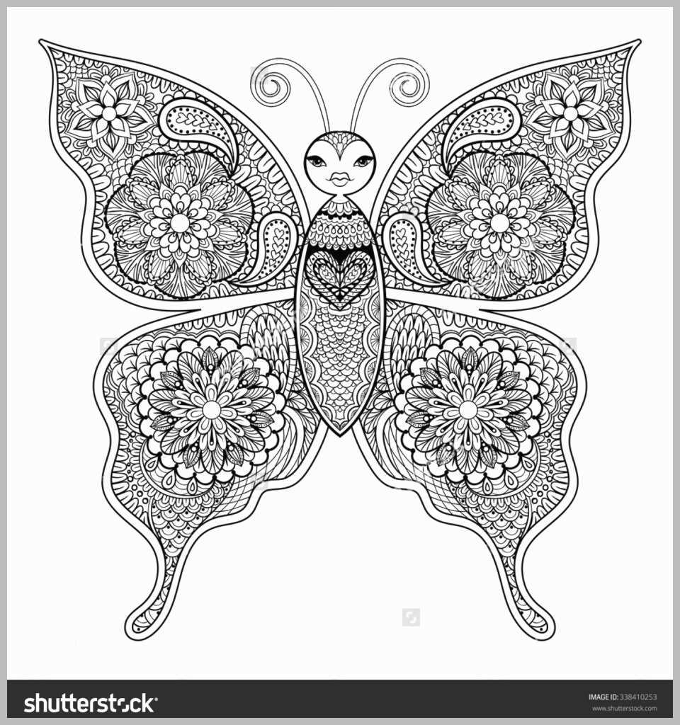 960x1024 Detailed Butterfly Coloring Pages Unique Detailed Butterfly