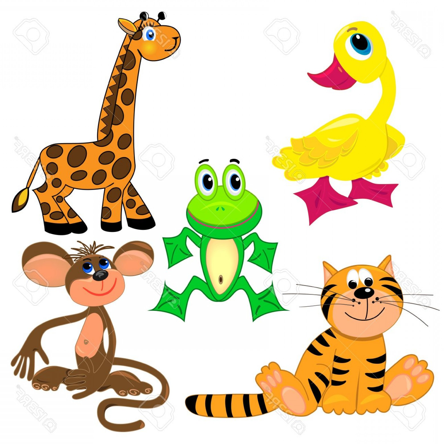 1560x1560 Photoset Of Zoo Animals Vector Illustration Cute Characters