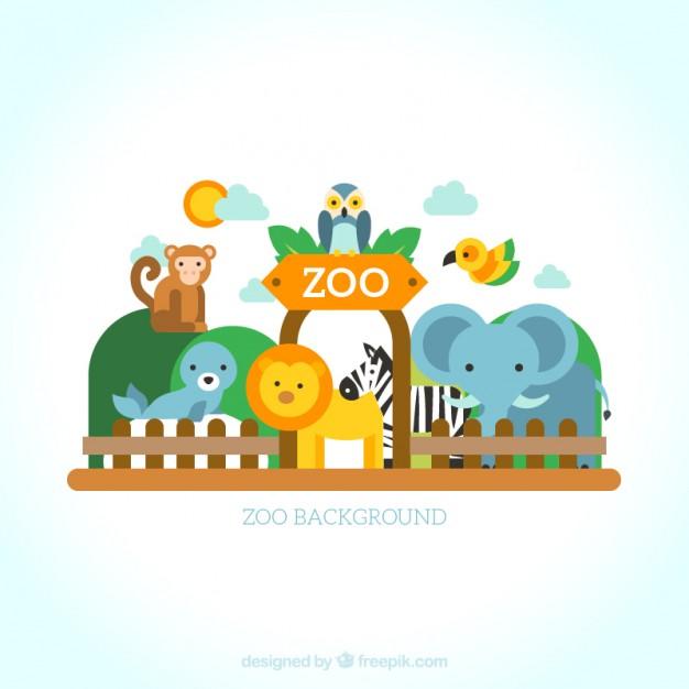 626x626 Set Of Wild Animals In The Zoo Vector Premium Download