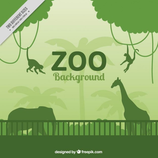 626x626 Collection Of Zoo Clipart Background High Quality, Free