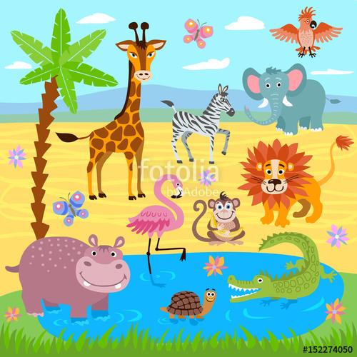 500x500 Baby Jungle And Safari Zoo Animals Vector Nature Background Stock