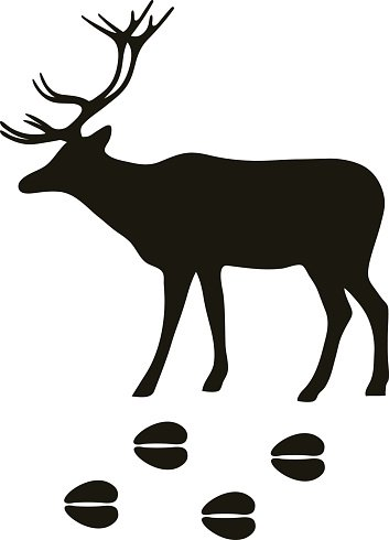 353x490 Black Silhouette Deer Wild Animal Zoo Vector Premium Clipart
