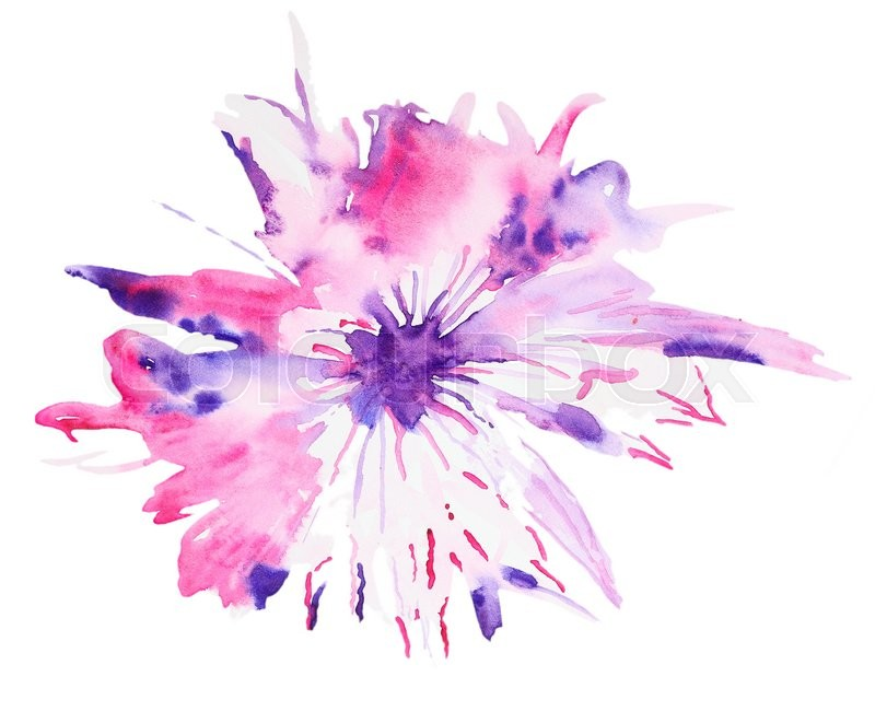 800x661 Abstract Watercolor Flower. Beautiful Watercolor Flowers On White