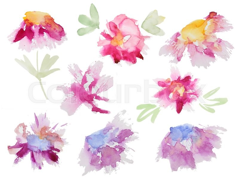 800x615 Collection Of Abstract Watercolor Flowers. Set Of Beautiful