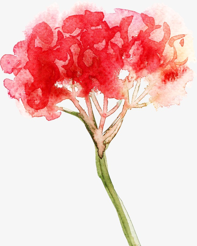 650x810 Abstract Watercolor Flowers, Watercolor Clipart, Retro, Hand