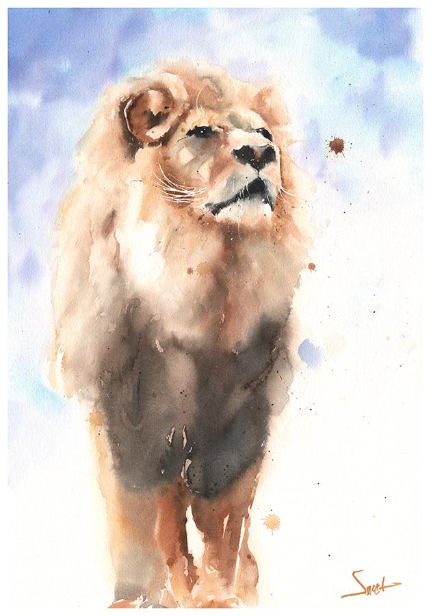 630x900 Watercolor Animal Paintings Amp Prints Artist Eric Sweet North