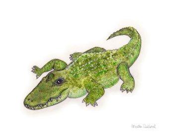 340x270 Alligator Wall Art Alligator Print Alligator Painting