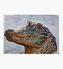 210x230 Alligator Watercolor Painting Amp Mixed Media Wall Art Redbubble