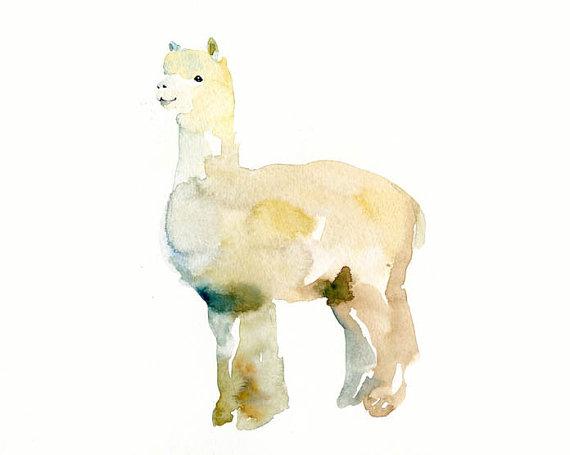 570x455 Alpaca 7x5inch Art Print Animal Watercolor Print Giclee Print