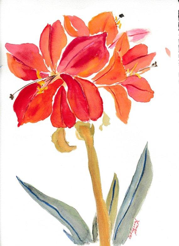 570x783 Amaryllis Original Painting Original Art Christmas Flower Etsy