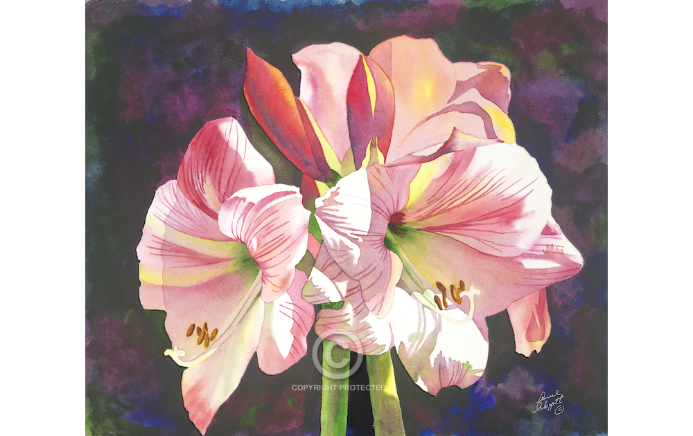 1000x630 Watercolor Painting Anne Abgott Water Colors Floral Design