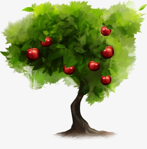 492x500 Hand Painted Watercolor Apple Tree, Watercolor Clipart, Tree