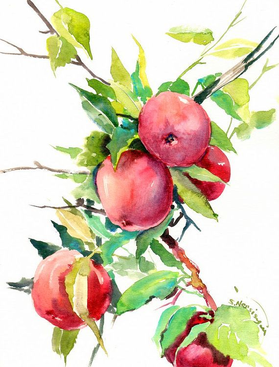 570x750 Red Apple Tree Painting, Original Watercolor 12 X 9 In, Red Green