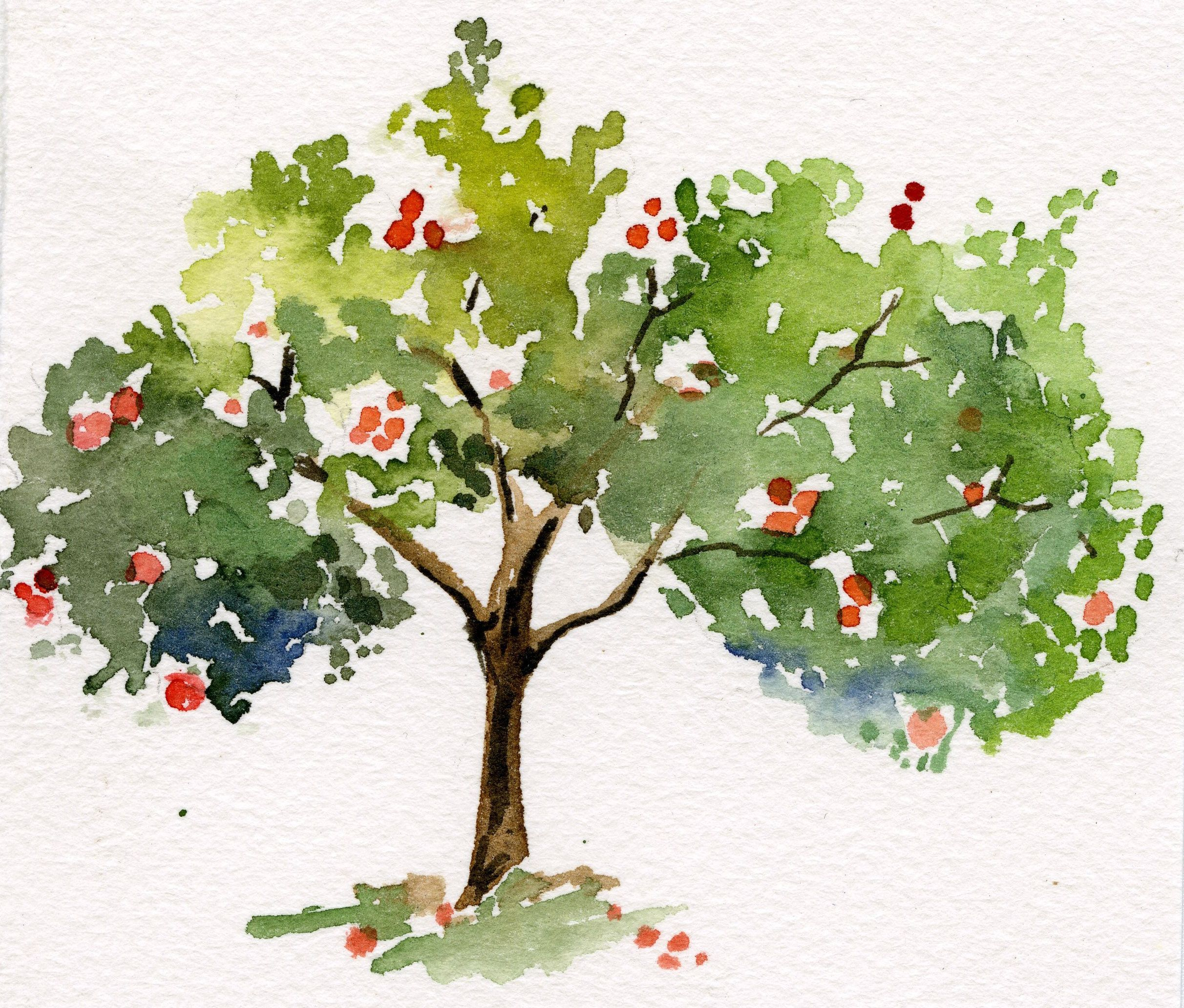 2424x2064 Thinking Of Turning This Apple Tree Into A Thank You Card. My