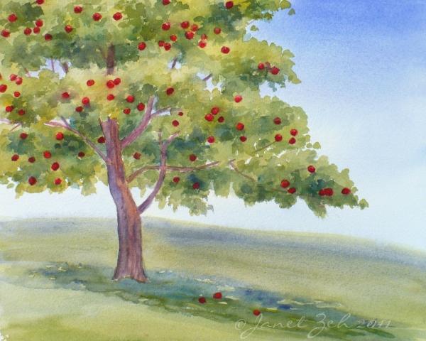 600x480 Zeh Original Art Blog Watercolor And Oil Paintings Apple Tree