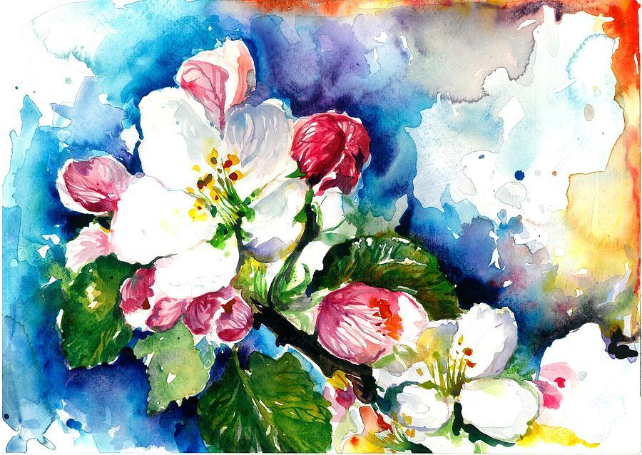 900x638 Apple Tree Blossom