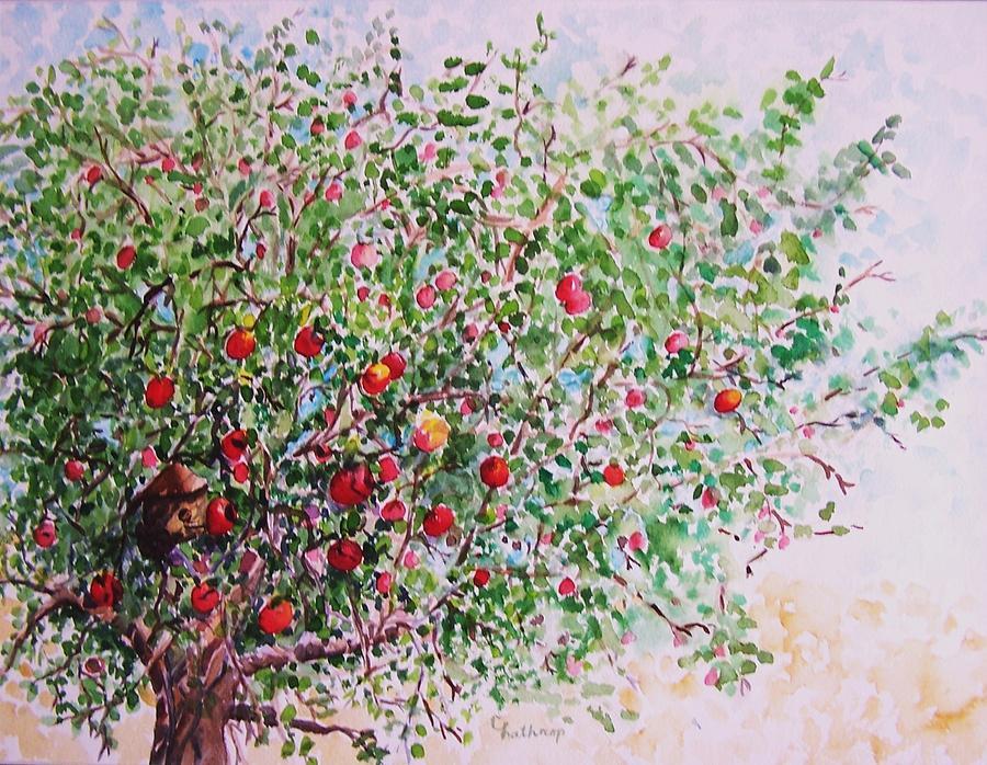 900x698 Apple Tree Painting By Christine Lathrop