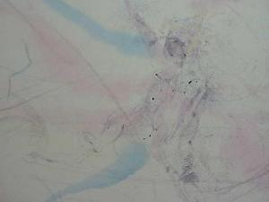 300x225 890a Vintage Signed Ariel Watercolor Painting