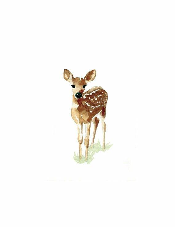 570x738 Baby Watercolor Deer Watercolor Dreams Watercolor