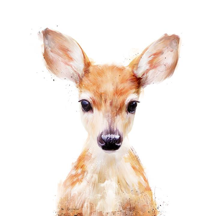 720x720 Collection Of Baby Deer Head Drawing High Quality, Free