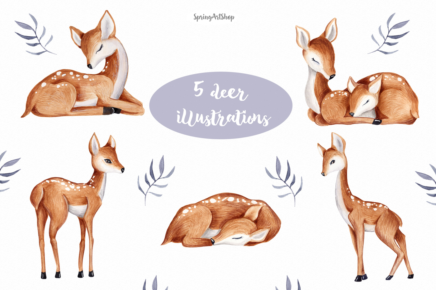 1400x933 Cute Baby Deer Watercolor Clipart By Springartshop