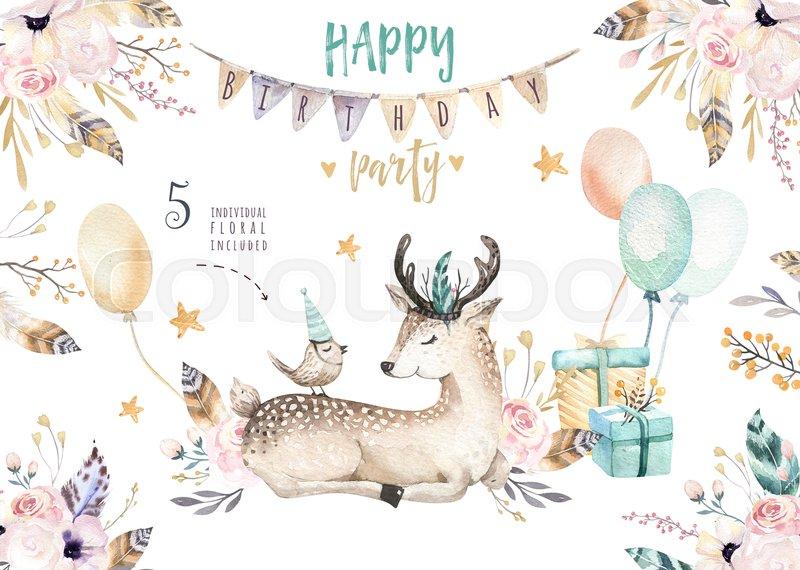 800x570 Cute Baby Deer Nursery Animal Isolated Illustration For Children