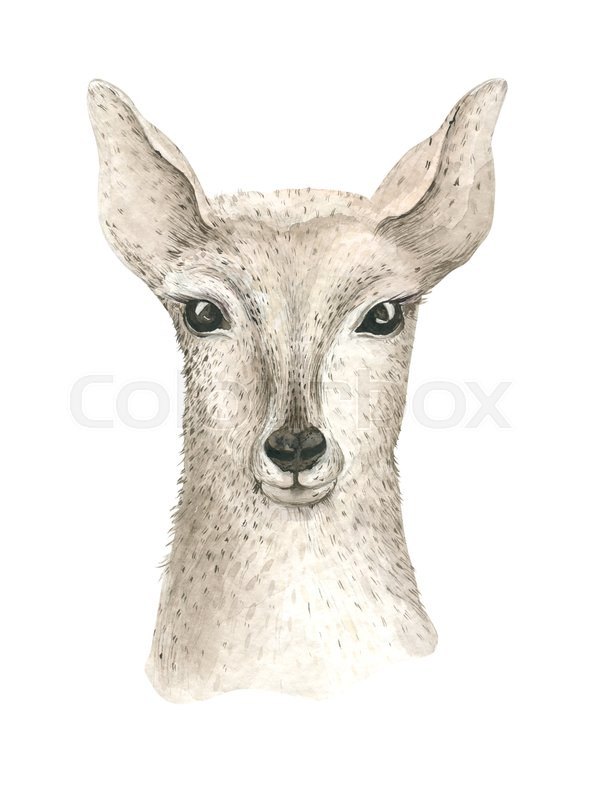 594x800 Merry Christmas Watercolor Card With Little Fawl. Baby Deer Happy
