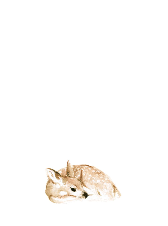 1116x1500 Resting Deer Art Print