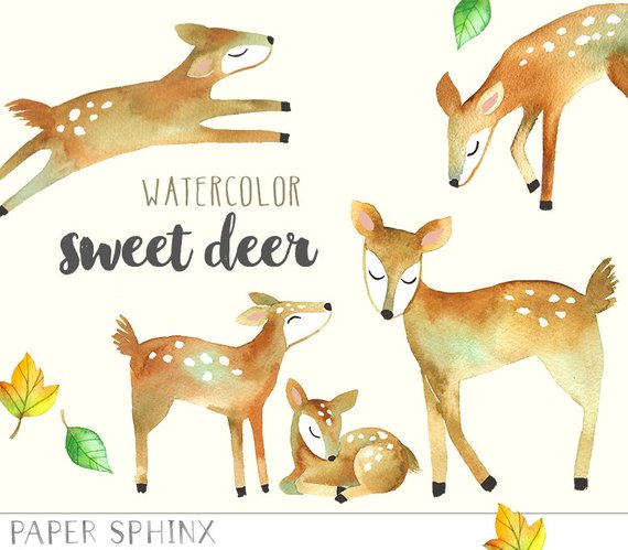 570x499 Watercolor Deer Clipart Mommy And Baby Deer Woodland Animals Etsy