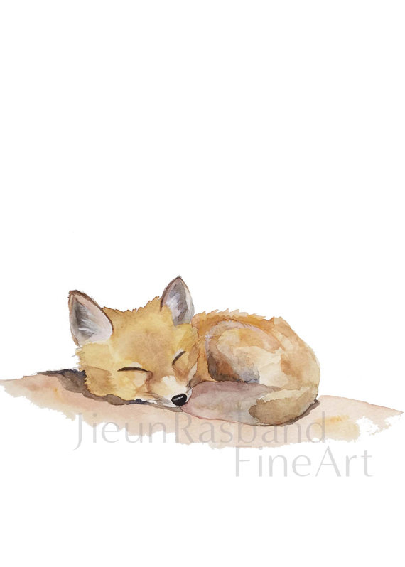 570x798 Sleeping Baby Fox Instant Print Printable By Jieunrasbandfineart