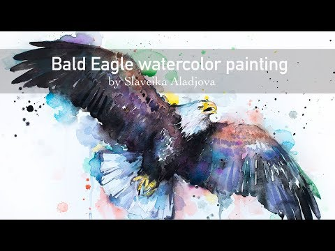 480x360 Bald Eagle Watercolor Painting By Slaveika Aladjova, Sped Up