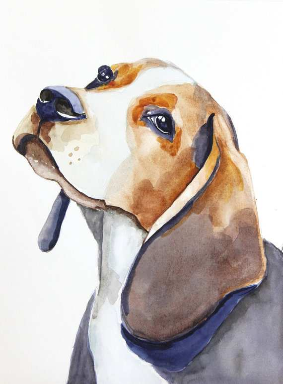 570x773 Dog Painting Elegant Beagle Original Watercolor Painting Dog