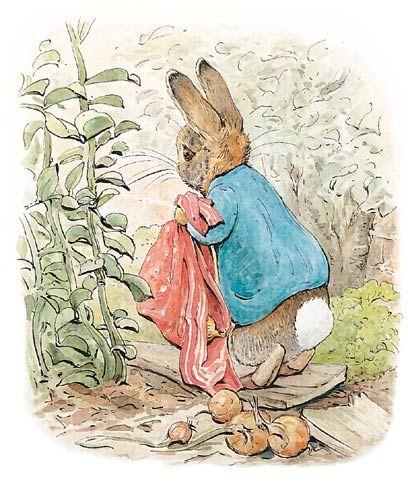 408x486 Beatrix Potter Images Beatrix Potter Art, Prints, Paintings