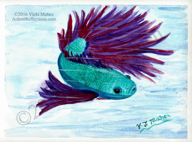 642x475 Betta Fish Painting Betta Fish Watercolor Siamese Fighting Etsy