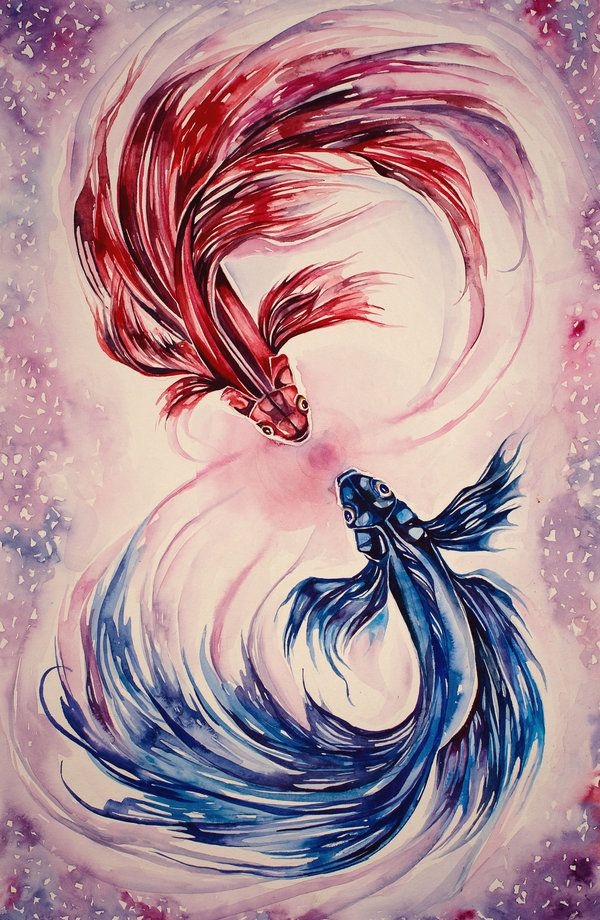 Betta Fish Watercolor At Getdrawings Com Free For Personal Use