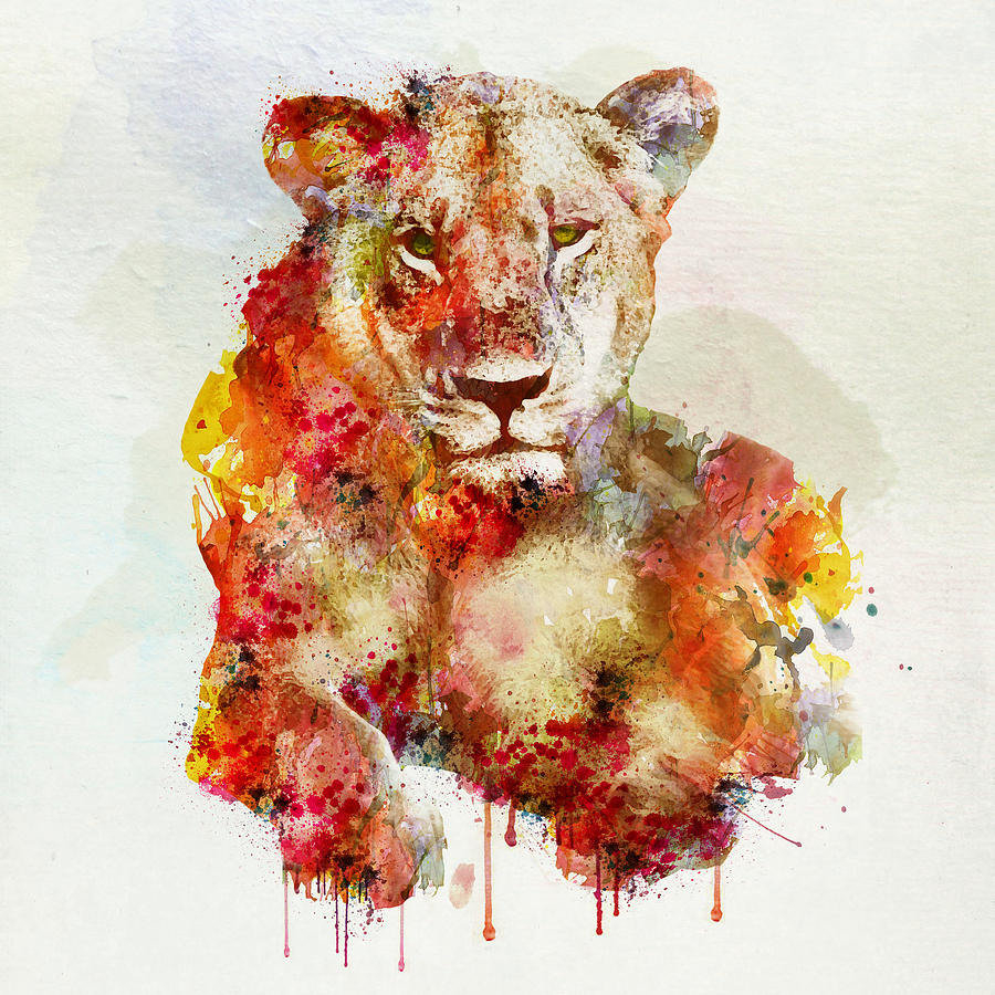 900x900 Resting Lioness In Watercolor Painting By Marian Voicu