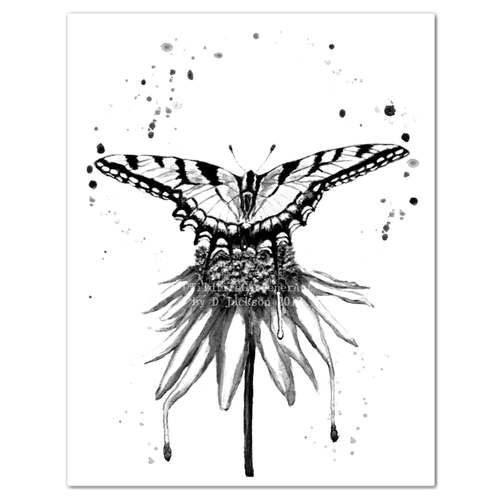 1600x1600 Black And White Butterfly On Flower Monochromatic Watercolor Art