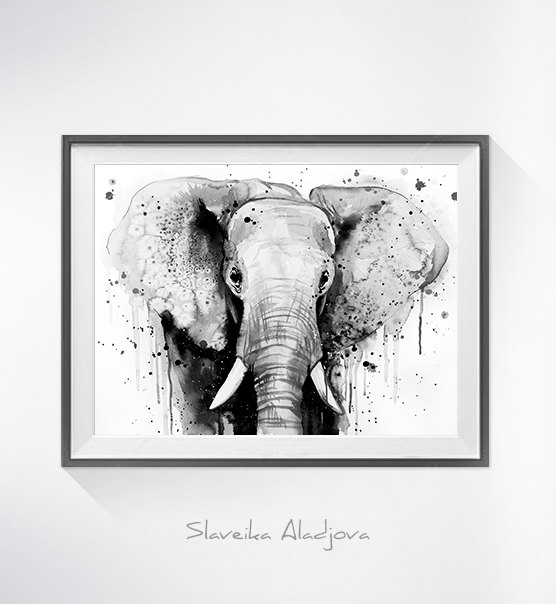556x604 Black Amp White Elephant Head Watercolor Painting Print