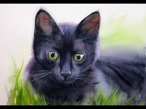 480x360 Black Cat In Watercolors Painting Demonstration