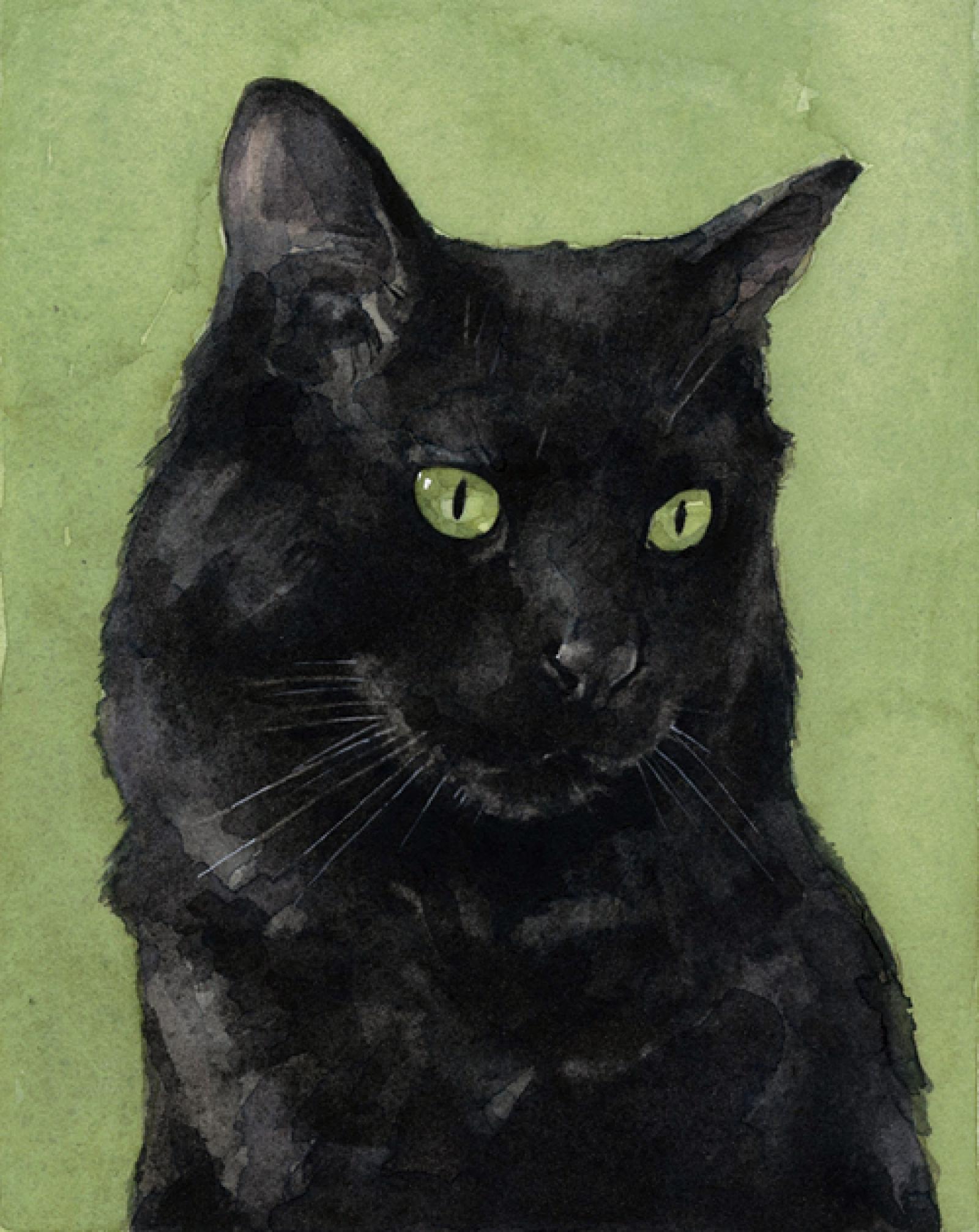 1600x2013 Black Cat Watercolor Print 5x7 David Scheirer Watercolors