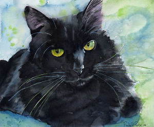 300x247 Giclee Print Black Cat Watercolor Painting Art Long Hair Pet